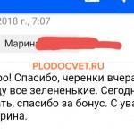 20191119_131119