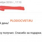 20191119_131457