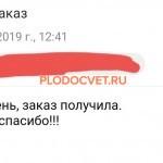 20191119_132342