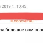 20191119_132746